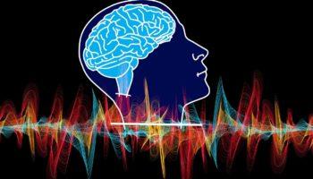 Зарядка для мозга и памяти